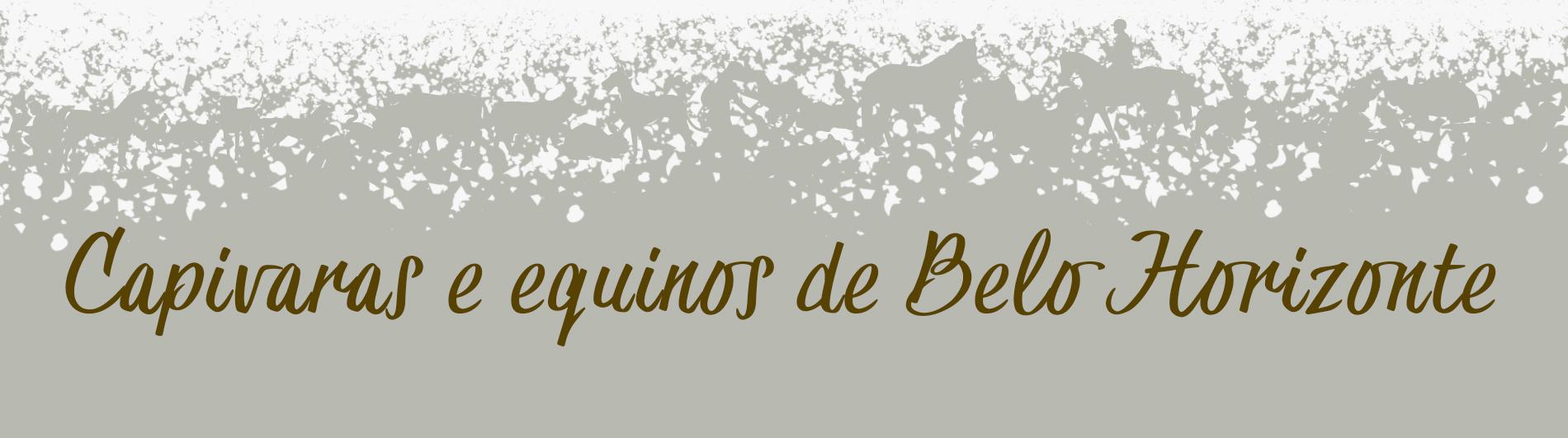 Capivaras e equinos de Belo Horizonte